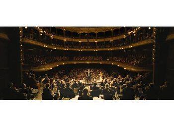 orchestra 005.jpg